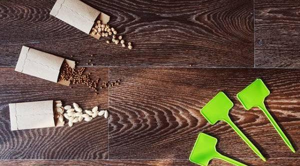 Конвертик для семян. Пошаговая инструкция