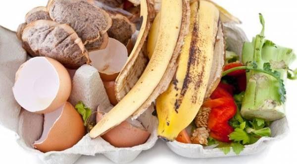 Миф оскорлупе икожуре. Можно ли из пищевых отходов получить удобрение?