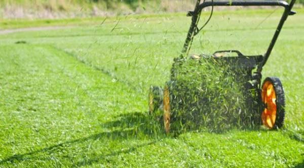 Газонокосилка и триммер. Чем косить траву?