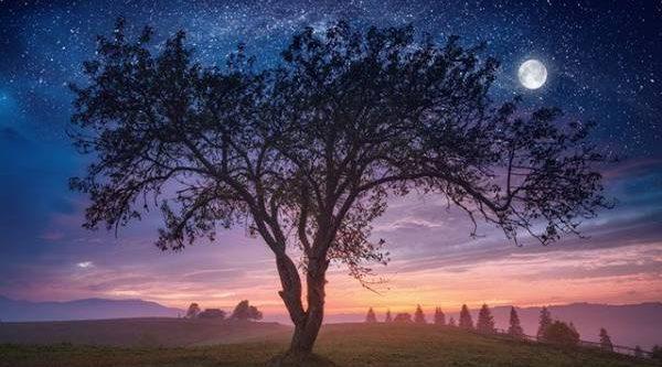 Календарь народных примет. Что предвещают мерцающие на рассвете звёзды?