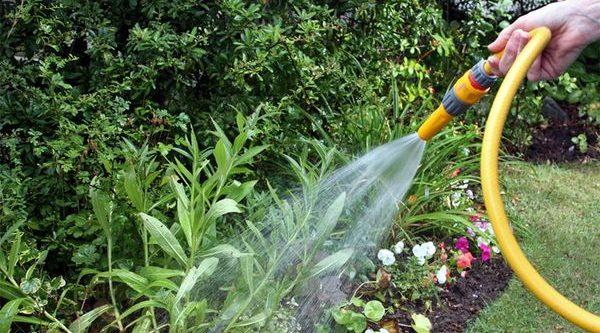 Системы полива огорода и сада