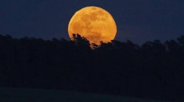 Лунный календарь садовода иогородника с 8 по 26 октября