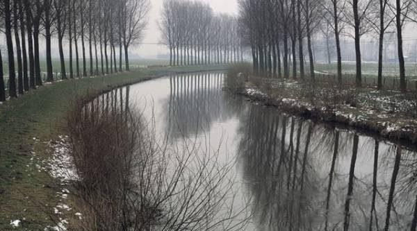Календарь народных примет: день начинается туманом – быть оттепели