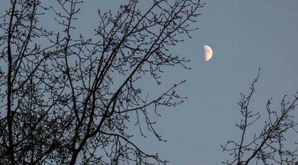 Лунный календарь садовода иогородника с 18 декабря по 29 января