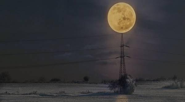 Лунный календарь садовода иогородника с 29 января по 13 февраля