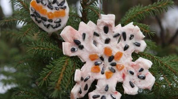 Съедобные игрушки. Как украсить ёлку с пользой для птиц