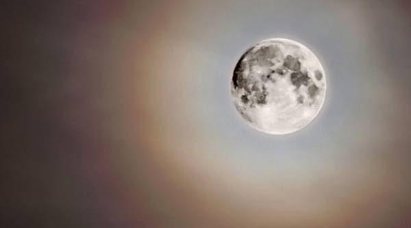 Лунный календарь садовода иогородника с 24 апреля по 14 мая