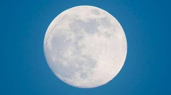 Лунный календарь садовода иогородника с 9 по 24 апреля