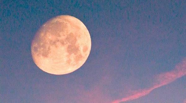 Лунный календарь садовода иогородника с 14 по 28 мая