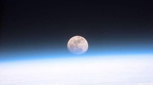 Лунный календарь садовода иогородника с 28 мая по 11 июня