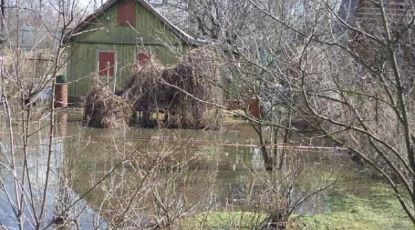 Срочное дренирование. Что делать, если сад весной затопило?