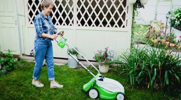 Мой безупречный газон. Что выбрать для стрижки травы на дачном участке?