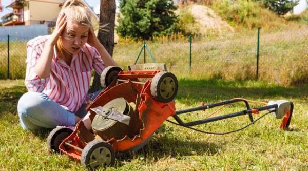Законы подлости для дачи. Почему все несчастья случаются на вашем огороде?